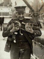 INDIE Armee GATO CHAT KAT CAT  16*12CM Fonds Victor FORBIN 1864-1947 - Non Classificati