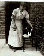 GATO CHAT KAT CAT  22*17CM Fonds Victor FORBIN 1864-1947 - Fotos