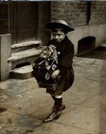 GATO CHAT KAT CAT  22*17CM Fonds Victor FORBIN 1864-1947 - Non Classificati