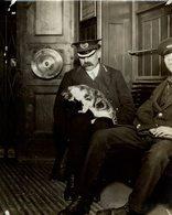 UNDERGROUND RAILWAY  GATO CHAT KAT CAT  22*17CM Fonds Victor FORBIN 1864-1947 - Fotos