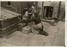 THE FELLOWSHIP LOST CATS SHELTON  GATO CHAT KAT CAT  16*12CM Fonds Victor FORBIN 1864-1947 - Non Classificati