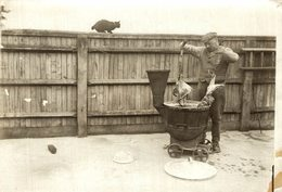 QUARANTAINE HOME FOR DOGS PREPARING MEAL   GATO CHAT KAT CAT  16*12CM Fonds Victor FORBIN 1864-1947 - Fotos