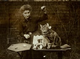GATO CHAT KAT CAT  21*16CM Fonds Victor FORBIN 1864-1947 - Non Classificati