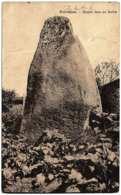 22 - B59224CPA - PENVENAN - Menhir Dans Un Jardin - Bon état - COTES-D'ARMOR - Penvénan