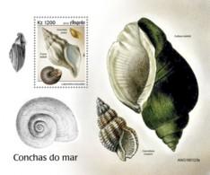 Angola   2019 Seashells   S201905 - Angola