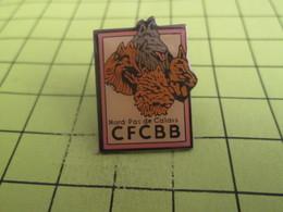1012c Pin's Pins / Beau Et Rare : THEME : ANIMAUX / CHIENS DE BERGER BELGE  NORD PAS DE CALAIS CFCBB - Animals