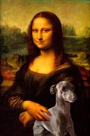 TRES BELLE PHOTO HUMORISTIQUE DE LA JOCONDE  ( Mona Lisa ) Avec LEVRIER  ITALIEN - Non Classés