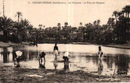 ALGERIE - COLOMB BECHAR SUD ORANAIS LA PALMERAIE LE TROU DU CHAMEAU - Bechar (Colomb Béchar)