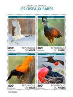 Niger  2019  Fauna Rare Birds  S201905 - Niger (1960-...)