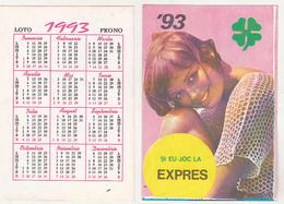 Romanian Small Calendar - 1993 National Lottery - Lottery Calendar- Expres - Calendarios