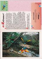 RAILRUNNER - N.V. Nederlandse Spoorwegen - (Maart 1992) - Tropisch Regenwoud, Burger's Zoo, Arnhem) - Andere