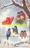 CPA ILLUSTRATEUR OISEAUX ARTIST SIGNED BIRDS OHLER BKWI B K W I  (PLIS - CREASES ) - Illustrateurs & Photographes
