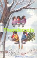 CPA ILLUSTRATEUR OISEAUX ARTIST SIGNED BIRDS OHLER BKWI B K W I - Illustrateurs & Photographes