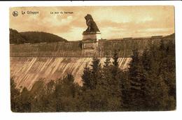 CPA - Carte Postale-Belgique Le Lion Du Barrage De La Gileppe VM4609 - Jalhay