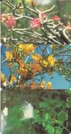 Oman (GPT) Magnetic Phone Cards, Desert Flowers, Set Of 3-cards - Oman