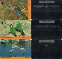 Oman (GPT) Magnetic Phone Cards, Birds (Flamingo Etc), Set Of 3 Cards - Oman