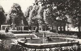 Loire : SAINT-ETIENNE : Place Bizillon Et Son Jardin ( C.p.s.m. - Photo Vérit. ) - Saint Etienne