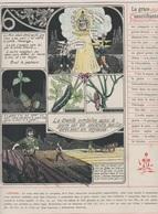 Image - Religieuse - 1912 -  290X225 - LA GRÂCE - La Grâce Sanctifiante. - Santini