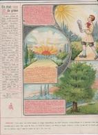 Image - Religieuse - 1912 -  290X225 - LA GRÂCE - En état De Grâce. - Santini