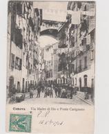 GENOVA, Via Madre Di Dio E Ponte Carignano  - F.p. -fine '1800 / Primi '1900 - Genova (Genoa)