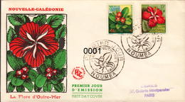 Nouvelle Calédonie FDC N° 288 / 289 - FDC
