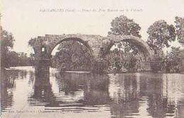 Gard        337        Gaillargues.Ruines Du Pont Romain Sur La Vidorle - Gallargues-le-Montueux