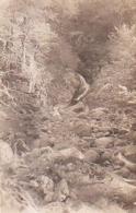 Gard        372        Dourbies.Cascade De Canissal - France