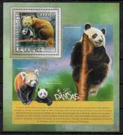 GUINEE BF 1729 * *  ( Cote 20e )  Ours Panda - Orsi