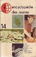Encyclopédie Des Jeunes Tome XIV : Divers, Index De Domenico Biggi (1965) - Books, Magazines, Comics