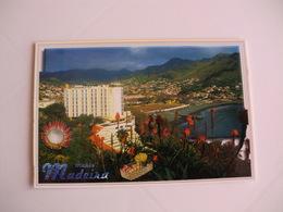 Postcard Postal Portugal Madeira Machico - Madeira