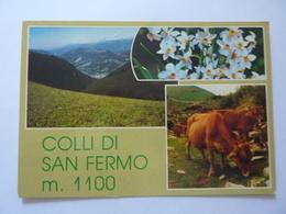 """Cartolina """"COLLI  DI SAN FERMO ( Bergamo )"""" - Bergamo"""