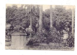 GUINEA - CONAKRY, Entrance Public Garden, 1906 - Guinea