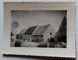 Photo Originale 29 île Grande Pleumeur Bodou Chaumière 1958 - Lieux