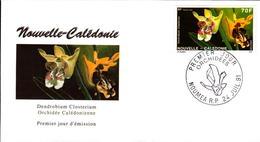 Nouvelle Calédonie FDC N°614 615  18 Juillet 1984 - FDC