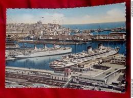 GENOVA Transatlantici In Porto CARTOLINA VIAGGIATA ANNI 50 - Genova