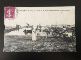 Cpa Circulée La Récolte Du Sel Marin Animée - Noirmoutier