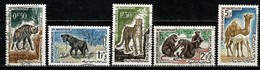 Mauretanie 1963  Yv 165/169 (5 Val.) Obl. -  Gebr. - Used - Mauritanie (1960-...)