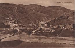 POSTCARD PORTUGAL - DOURO - VISTA DO PINHÃO  - COSTUMES - WINES - GRAPES - Vila Real
