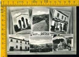 Arezzo Antria - Arezzo