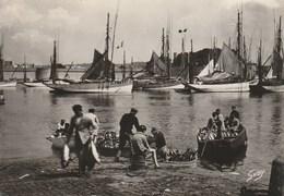 Dép. 29 - CONCARNEAU (Finistère) - Débarquement Du Thon. - Ed. Artaud N° 195. Photographie Véritable. Animée. - Concarneau