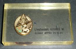Rare Presse-papier Plexiglas Plexi Avec Médaille En Métal émaillé Dragon Ailé 29 E Arthus Bertrand, Officier APPRO, 1984 - Francia