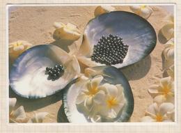 9AL1698 Perle Noire De Tahiti Papeete   2 SCANS - Polynésie Française