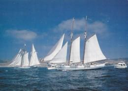 AM14 Shipping - Sailing Ships, Large Boats - Segelboote