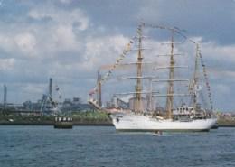 AM14 Shipping - Sailing Ships, Sail Amsterdam - Segelboote