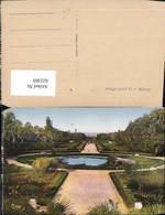 622369,Alger Algier Le Jardin D Essai Algeria - Ohne Zuordnung