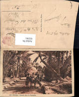 622361,Biskra Chemin Dans La Palmeraie Algeria - Algerien