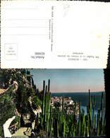 622600,Foto Ak Monaco Le Rocher Vu A Travers Les Plantes Exotiques Kaktus Kakteen - Ohne Zuordnung