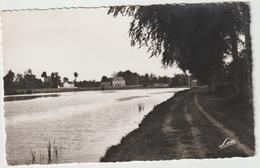 Ille  Et  Vilaine : GUIPEL : Le  Bassin  D Ela  Plouzière  Et Le  Café  Gréhalle  1956 - France