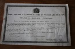 Diplome Sur Velin 1816  Ecole Royale D'economie Rurale Et Vétérinaire De LYON - Historical Documents