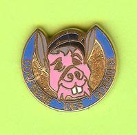 Pin's Confrerie Des Goranes Cochon - 5GG17 - Animals